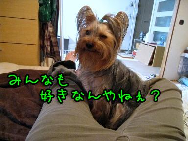 1_20090529183015.jpg