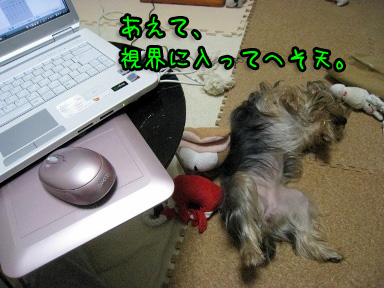1_20090607144103.jpg
