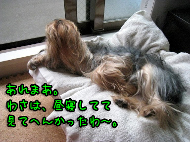 1_20090625202547.jpg