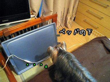 1_20090626195201.jpg