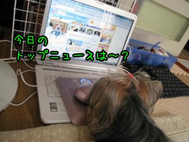1_20090630144107.jpg
