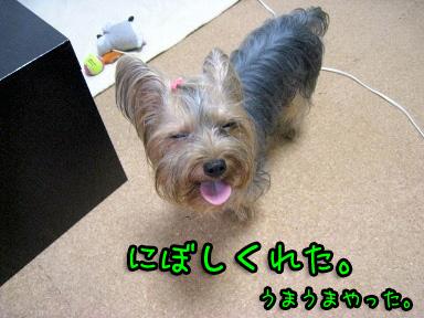1_20090702194704.jpg