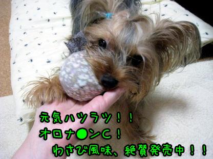 1_20090706192415.jpg
