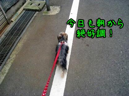 1_20090719193349.jpg