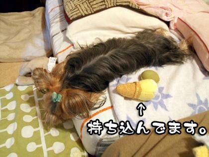 1_20090831184744.jpg