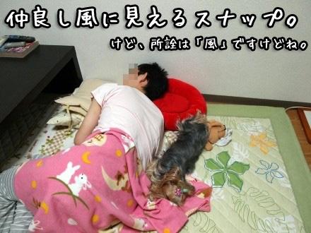 1_20091109191639.jpg