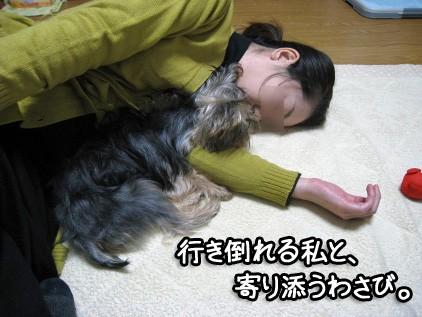 もう、本当に疲れたんです。