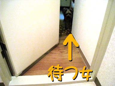 事件はトイレで起こっている。