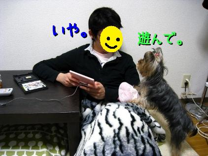 2_20090116214008.jpg