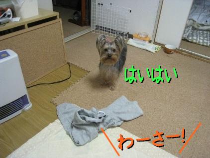 2_20090313160754.jpg