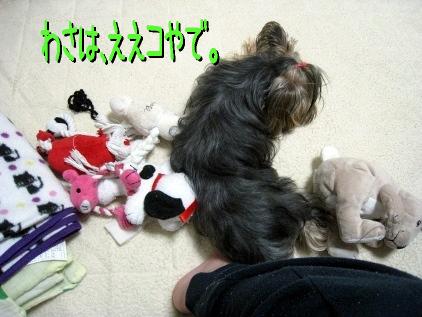 2_20090414200524.jpg