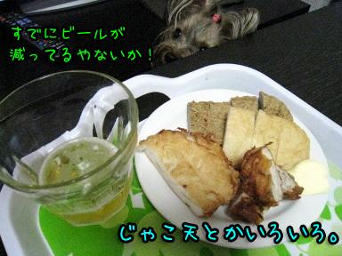 2_20090608191829.jpg