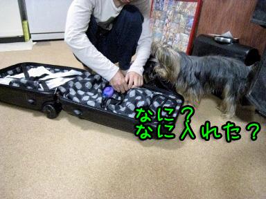 2_20090609194426.jpg