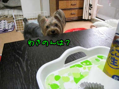 2_20090613183541.jpg