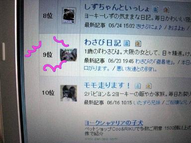 2_20090625202548.jpg