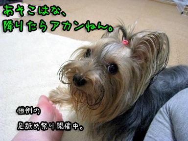 2_20090626195202.jpg