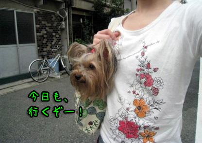 2_20090711190603.jpg