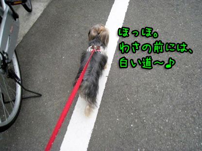 2_20090719193349.jpg