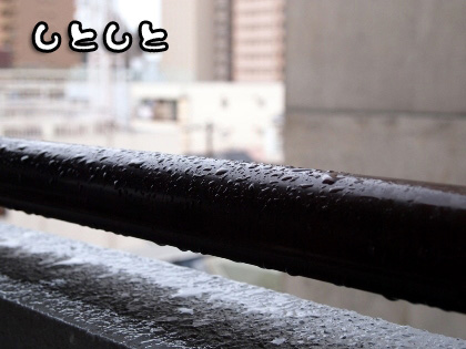 2_20090912165335.jpg