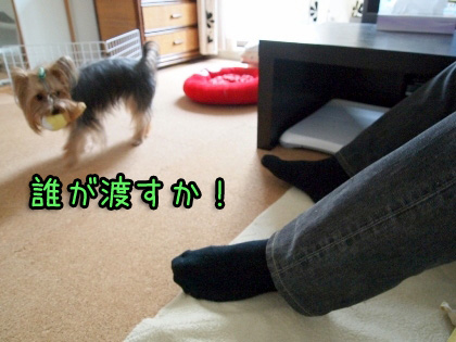 2_20090916204838.jpg