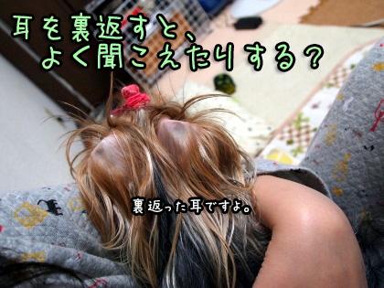 2_20091012191038.jpg