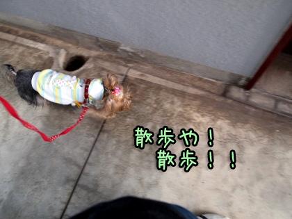 2_20091014170317.jpg