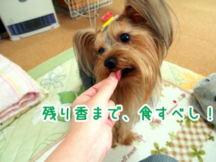 2_20091129184605.jpg