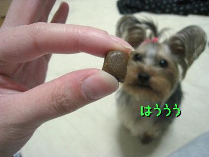 3_20090226194814.jpg