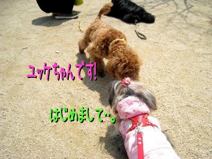 3_20090409185138.jpg