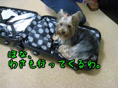 3_20090609194426.jpg