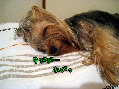 3_20090718205809.jpg