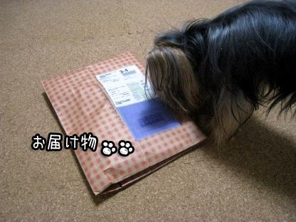 3_20090807144202.jpg