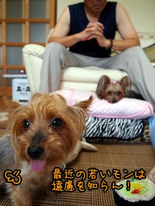 3_20090814172051.jpg