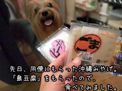 3_20090821161611.jpg