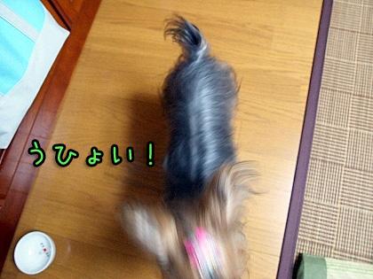 3_20090924200319.jpg