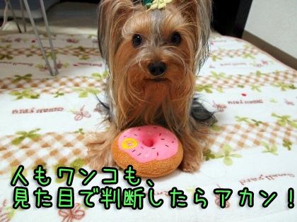 3_20090930180533.jpg