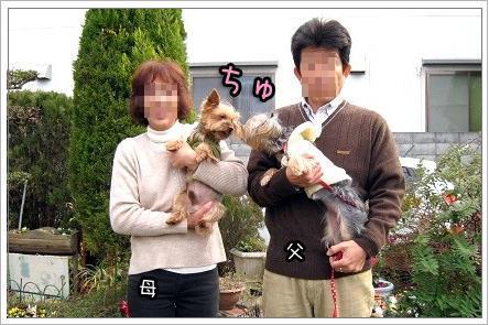 3_20091118180139.jpg