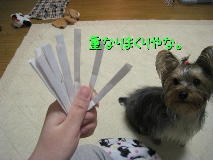 4_20090223184640.jpg