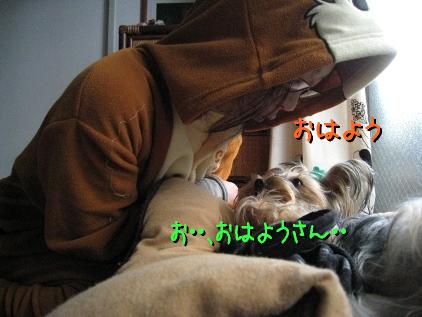 4_20090315154731.jpg