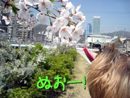 4_20090408154128.jpg