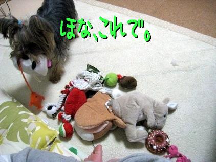4_20090420183432.jpg