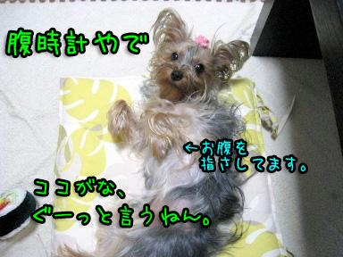 4_20090610160755.jpg