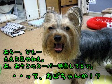 4_20090616192054.jpg