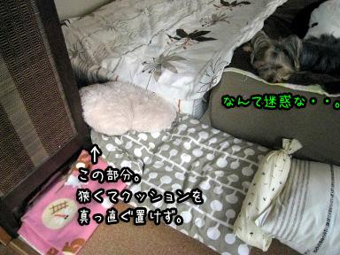 4_20090617183507.jpg