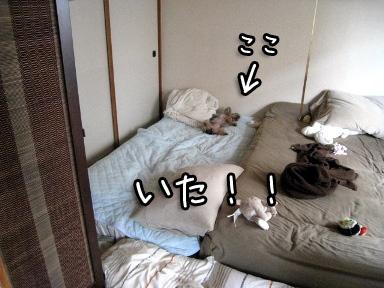 4_20090624144904.jpg