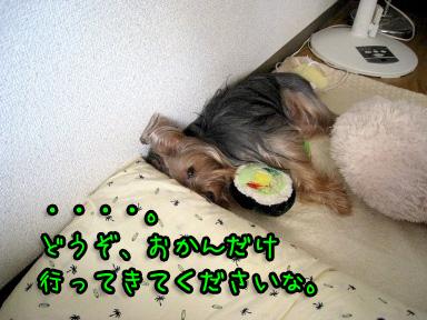 4_20090629190500.jpg