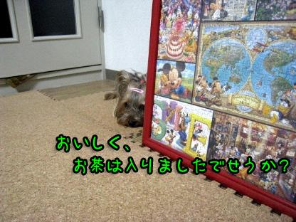 4_20090709190404.jpg