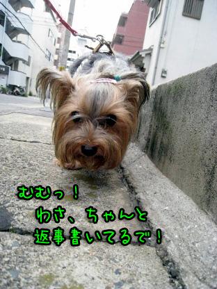 4_20090719193350.jpg