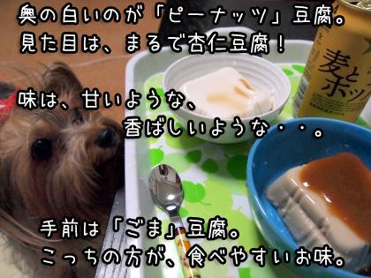 4_20090821161611.jpg