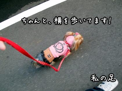 4_20091013192136.jpg
